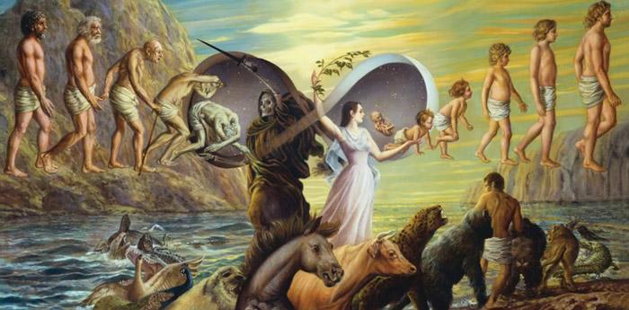 Reincarnation and Plato